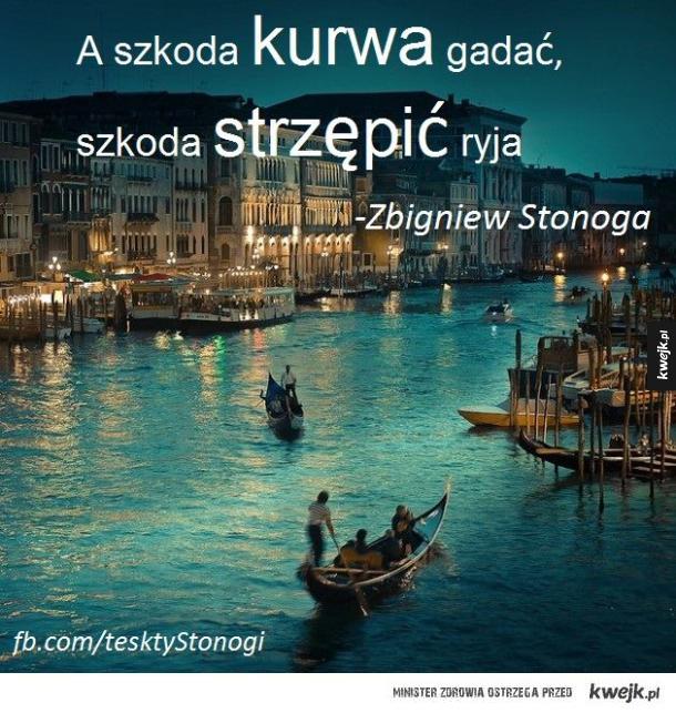 Zbigniew Stonoga zapisany helveticą