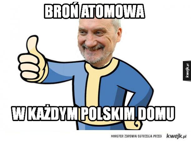 Polski Fallout