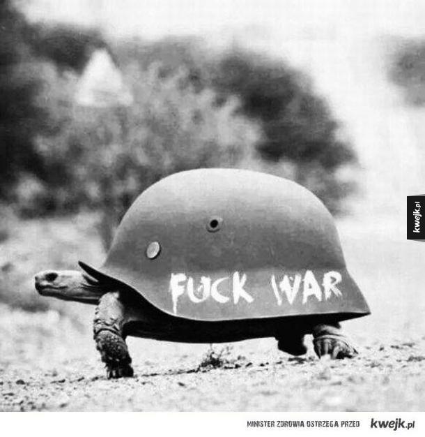 Żółw wojenny