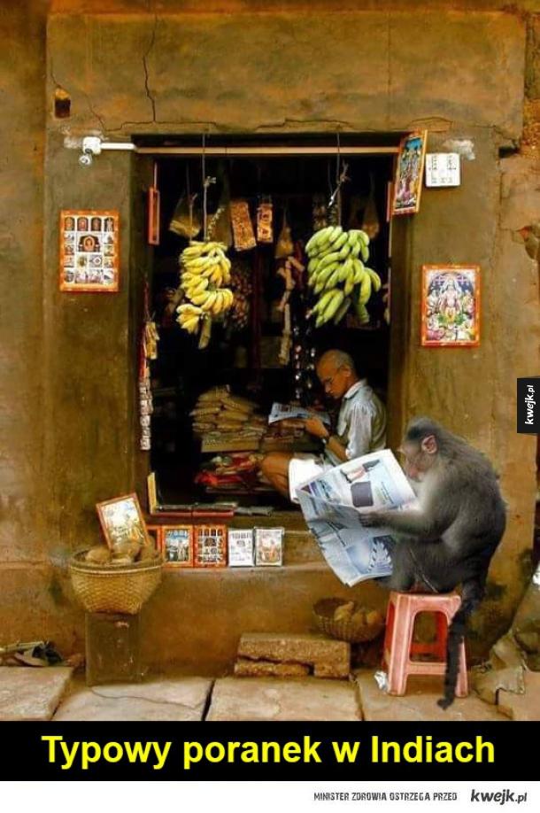 typowy poranek w indiach