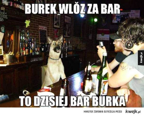 bar burka