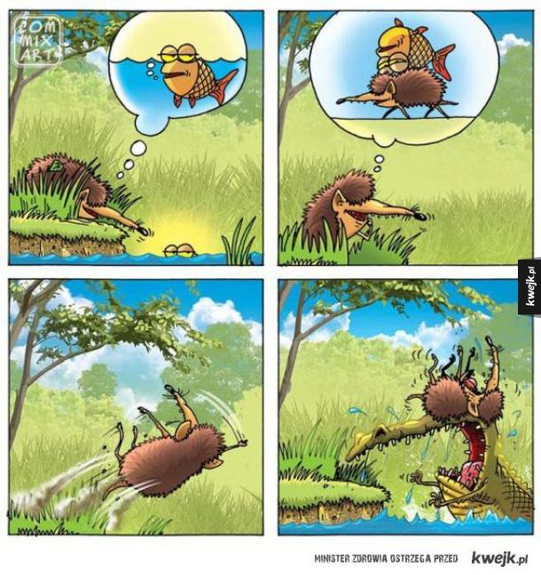 przygody jeżyka