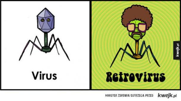 Virusy