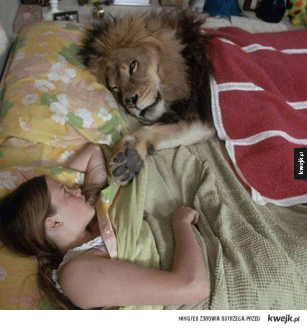 Z kociakiem w łóżku
