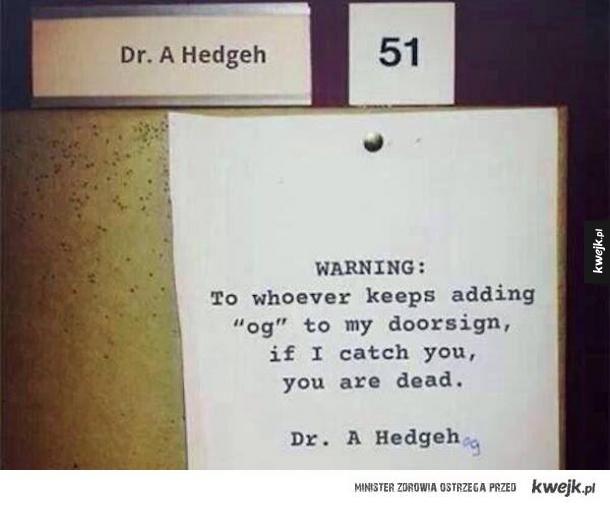 Doktor Jeż