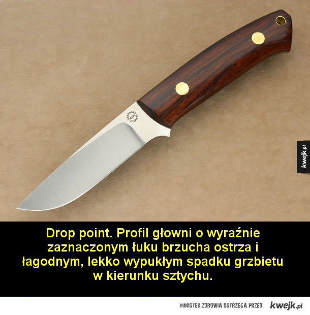 Podział noży ze względu na profil głowni