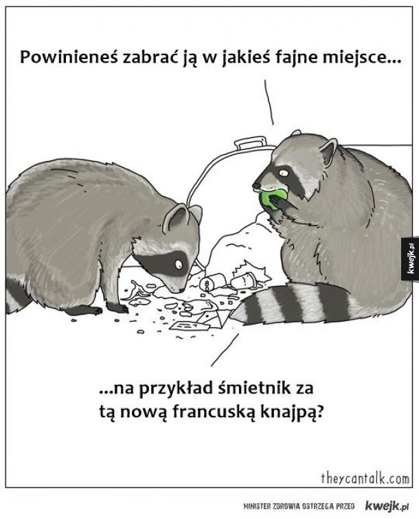 Pandy śmietnikowe