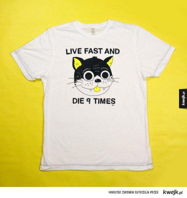 gdyby koty nosiły ubrania