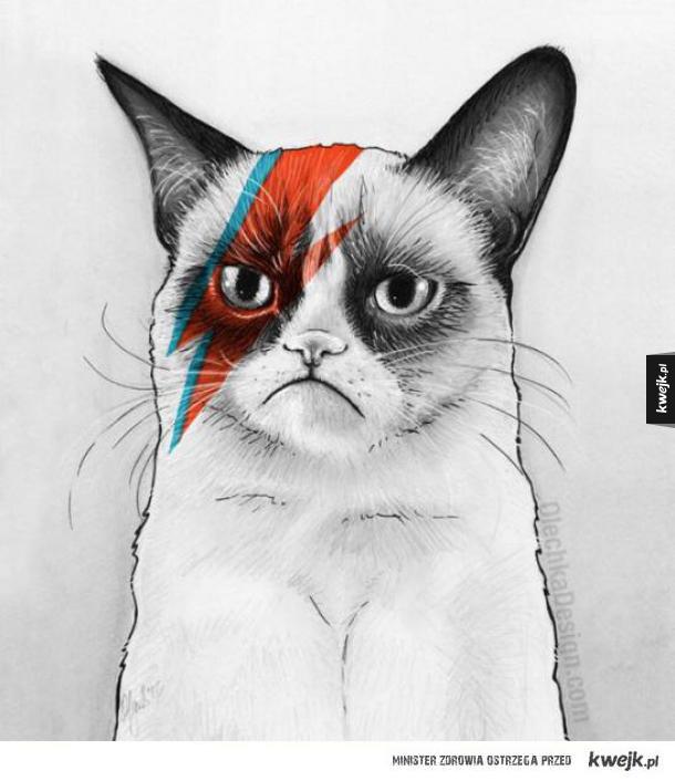 Grumpy Bowie