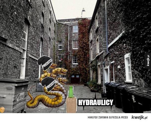 Hydra ulicy