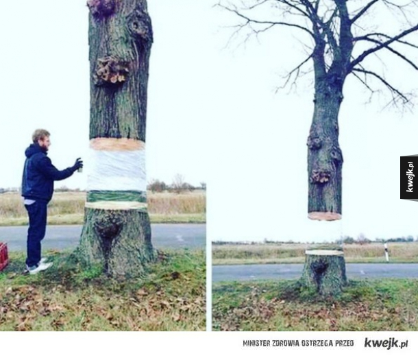 sztuka iluzji