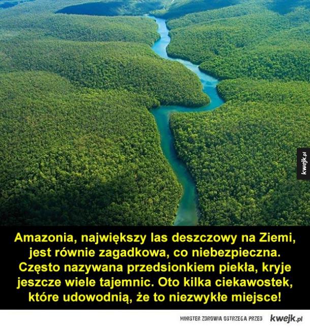 Ciekawostki o Amazonii