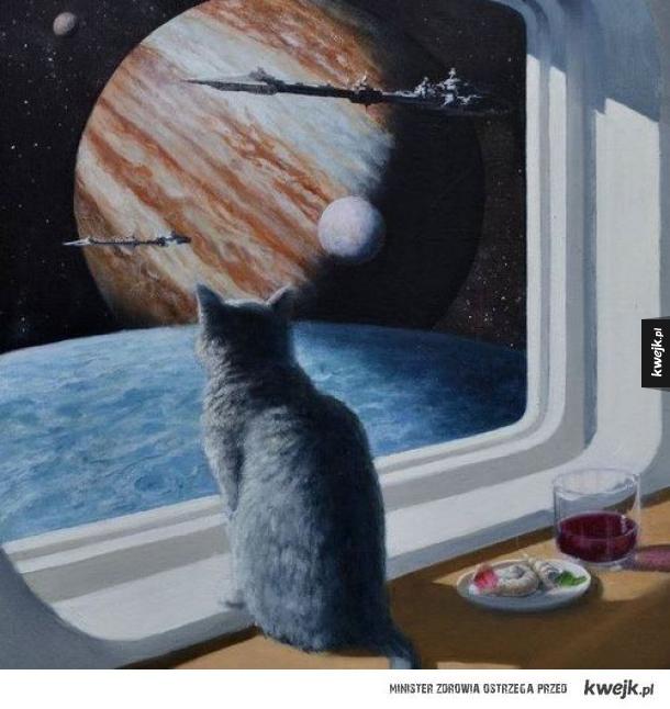 Kot w przestrzeni