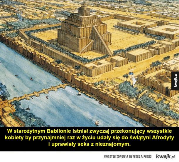 sprytny babilon
