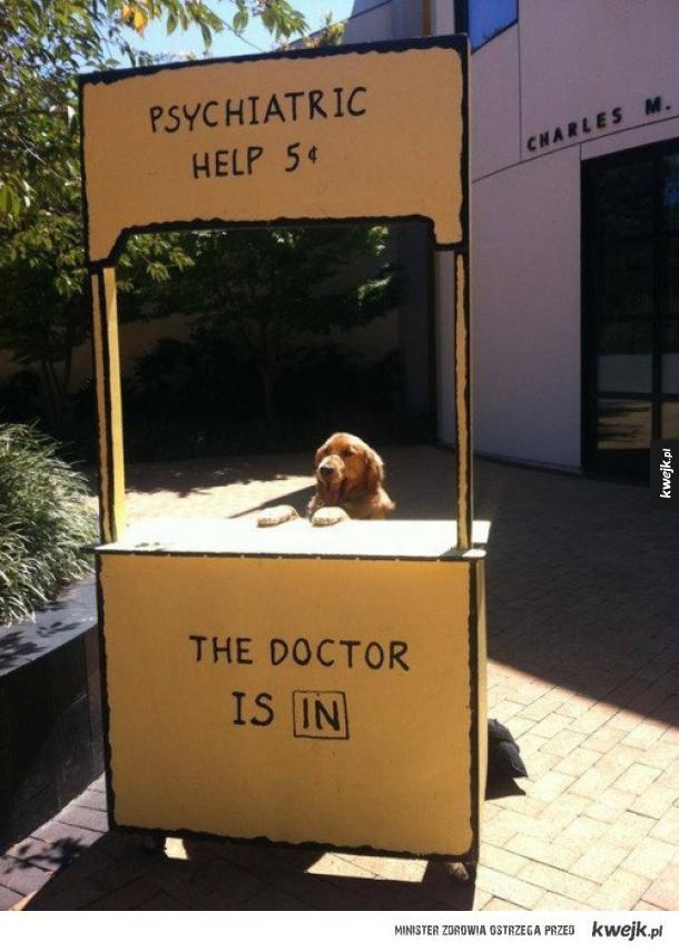 cześć doktorku