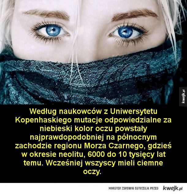 Rzeczy, których mogliście nie wiedzieć o oczach