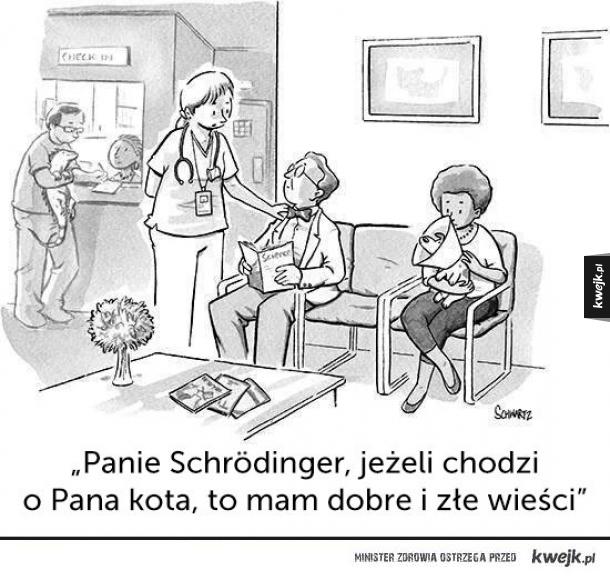 Panie Schrodinger...