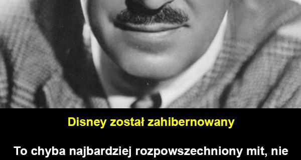 Najpopularniejsze Mity Na Temat Disneya Galeria Kwejk Pl