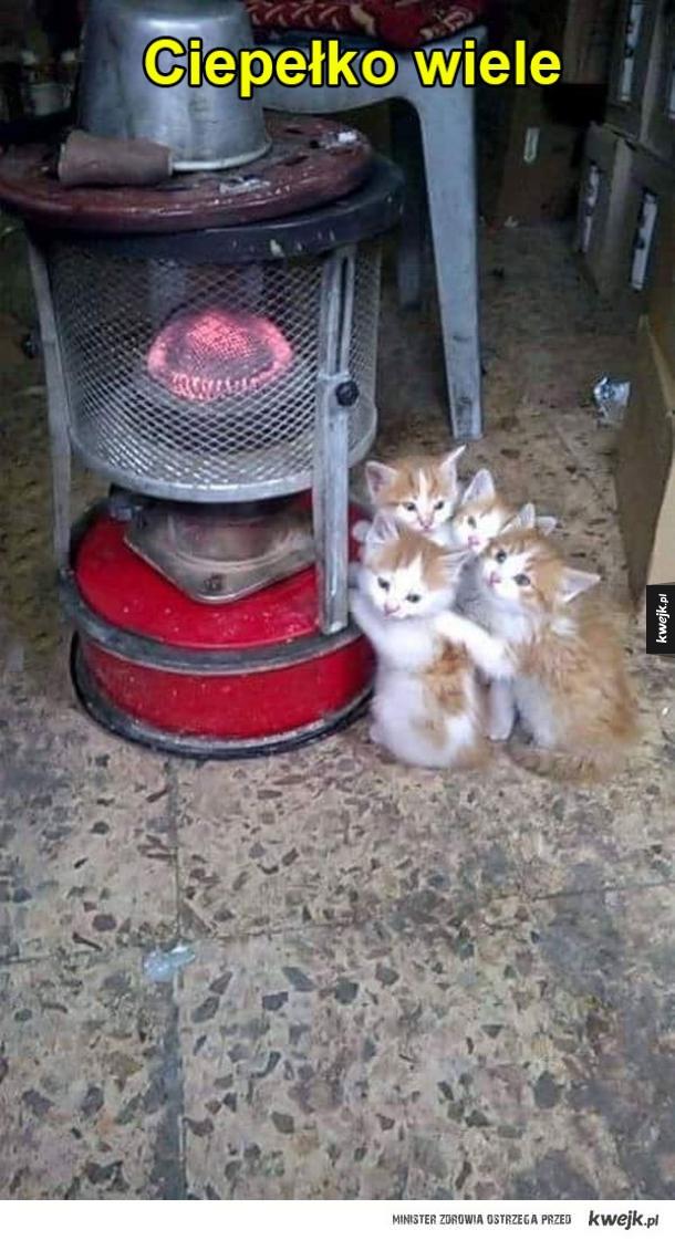 Ciepło mocno!