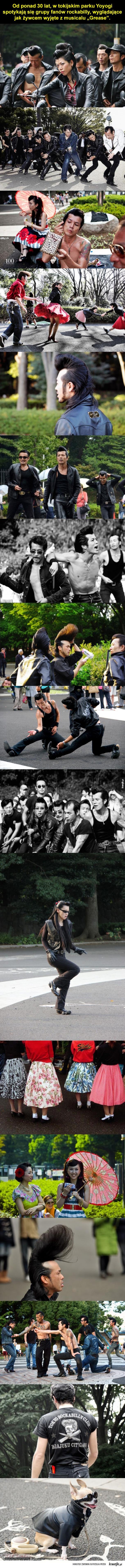 Japońscy fani Elvisa