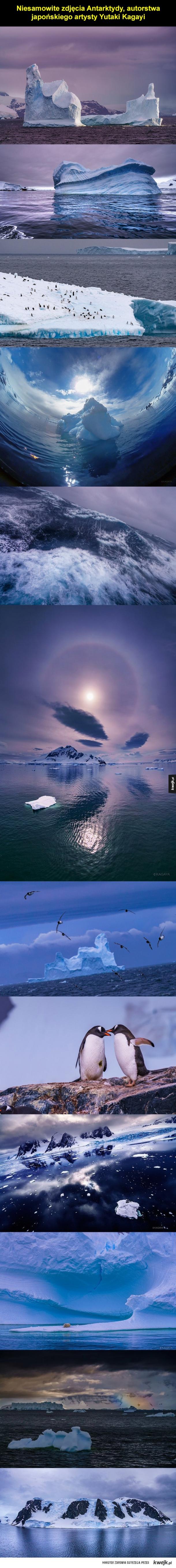 Surowe piękno Antarktydy