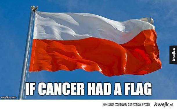 Flaga raka