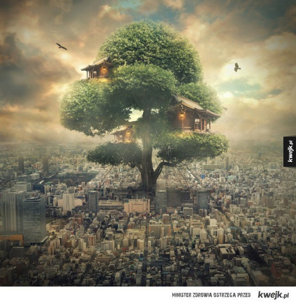 Klimatyczne grafiki autorstwa Even Liu