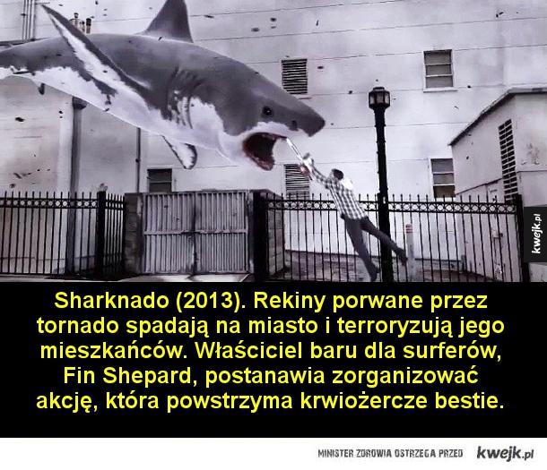 Najlepsze (najgorsze?) filmy wytwórni Asylum - Sharknado (2013). Rekiny porwane przez tornado spadają na miasto i terroryzują jego mieszkańców. Właściciel baru dla surferów, Fin Shepard, postanawia zorganizować akcję, która powstrzyma krwiożercze bestie.  Sharktopus vs. Whalewolf (2015). Hybryda rekina