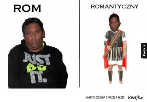 Rodzaje romów