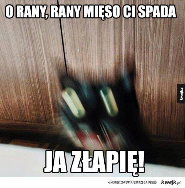 O RANY RANY