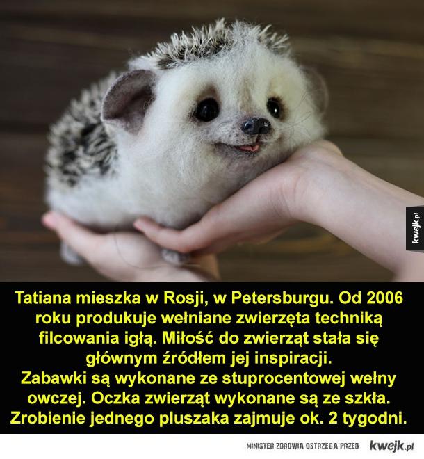 Urocze zwierzaki-wełniaki - Tatiana mieszka w Rosji, w Petersburgu. Od 2006 roku produkuje wełniane zwierzęta techniką filcowania igłą. Miłość do zwierząt stała się głównym źródłem jej inspiracji.
