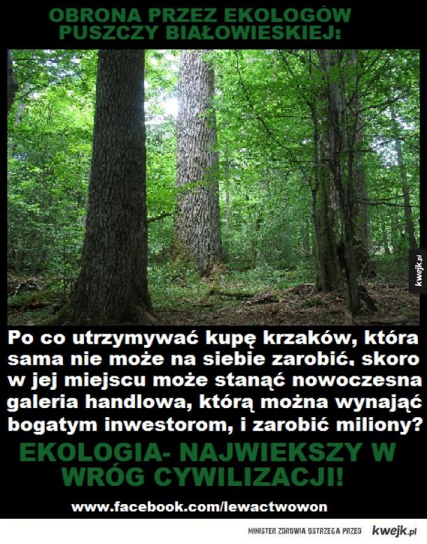 Lewaccy ekolodzy