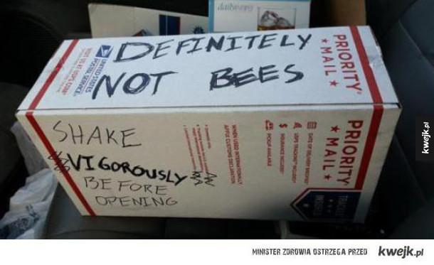 Jak dostarczać pszczoły