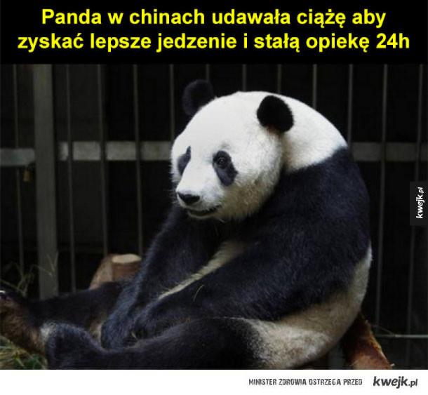 udana panienka :)