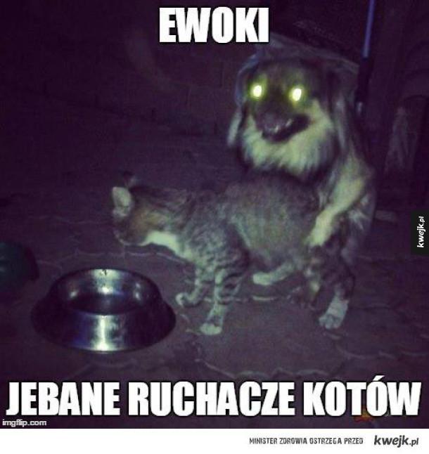 Ewoki...
