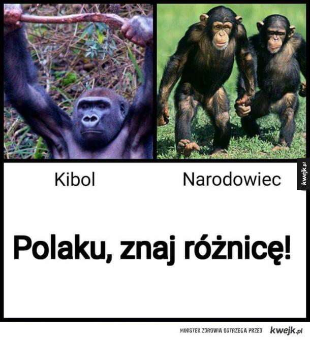 Znaj różnicę