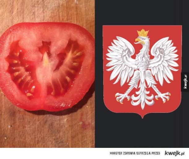 pomidor patriotyczny
