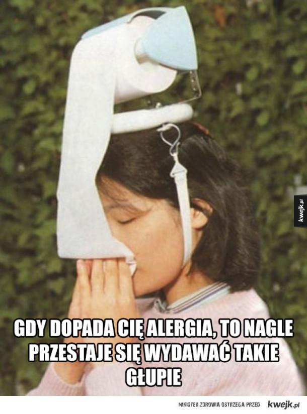 Alergicy zrozumieją...