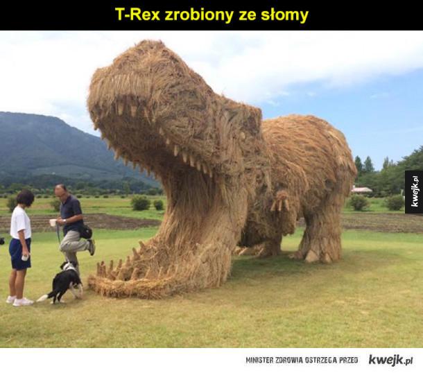 T-rex w Japonii