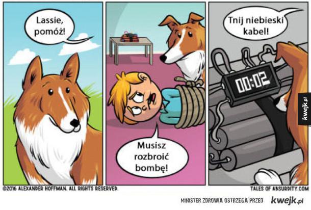 Pomocna Lassie