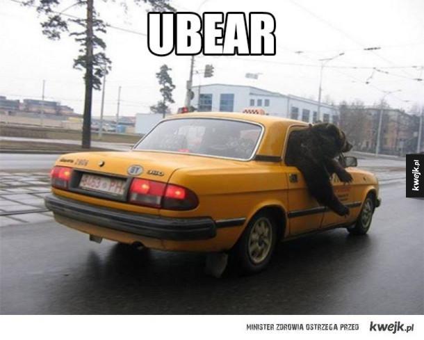 ubear