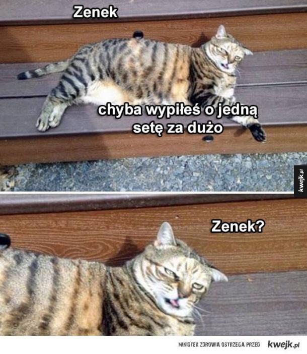 Zenek odpadł