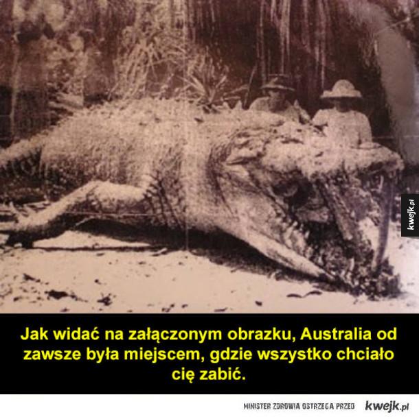 "Australia to kraina ""nope"""