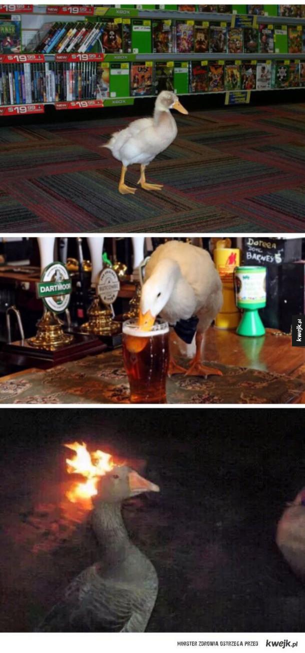 Imprezowa kaczka