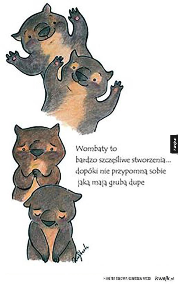 Wombaty