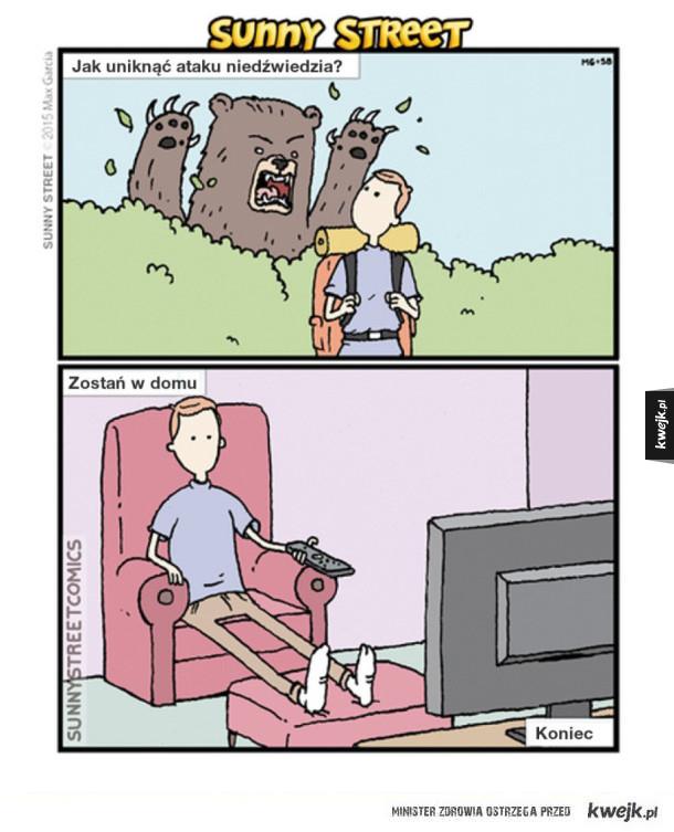 Jak uniknąć ataku niedźwiedzia