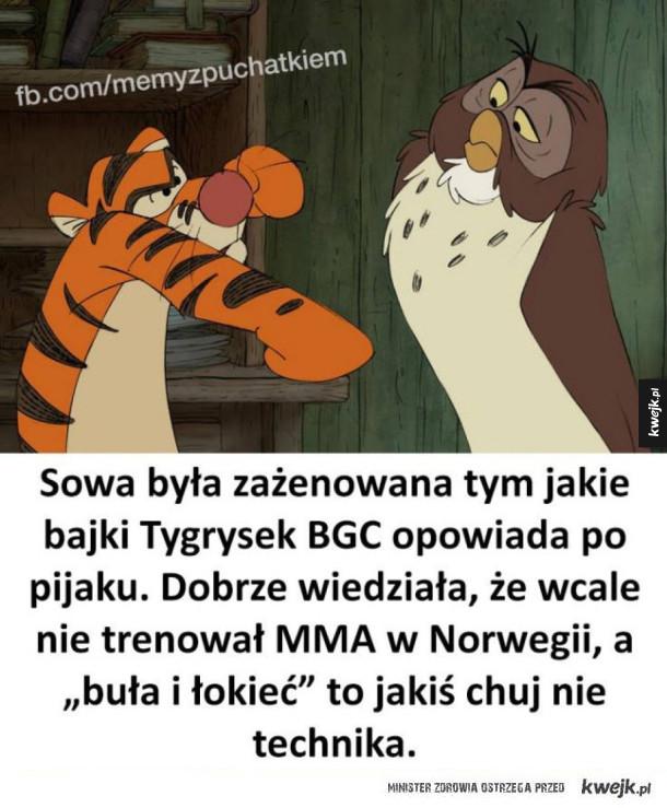 Oj tygrysku