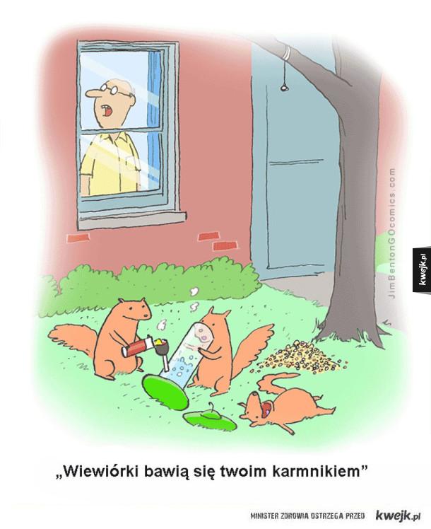wiewióreczki