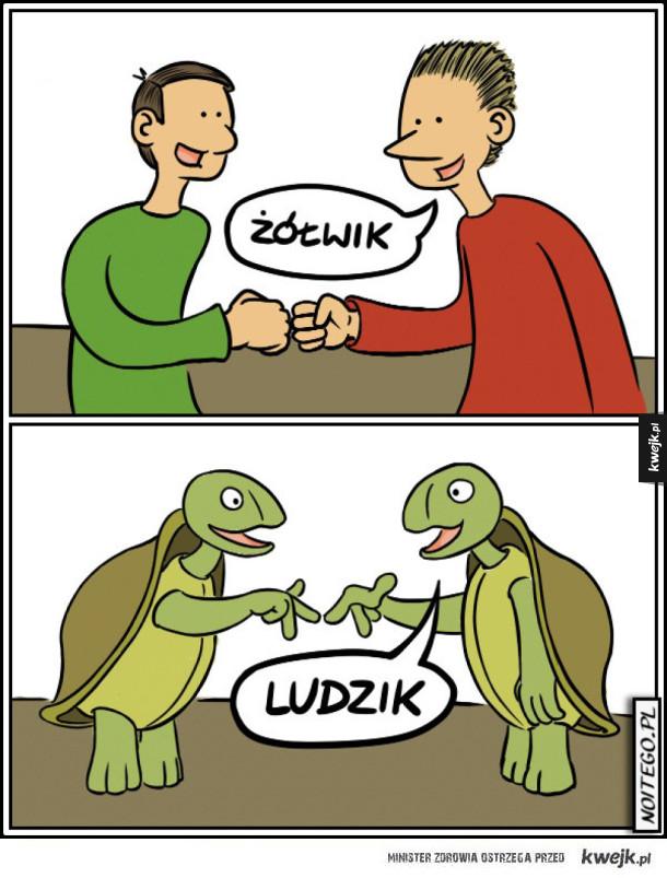 Ludzik