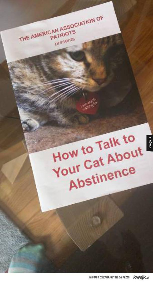 Jak rozmawiać z kotem